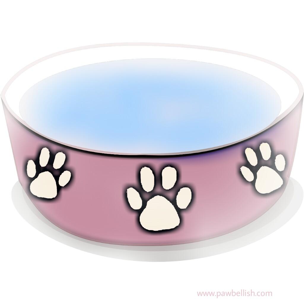 Pink pawprint dog water bowl