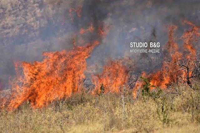 Πυρκαγιά στην Αργολίδα στο νέο δρόμο προς Λυγουριό
