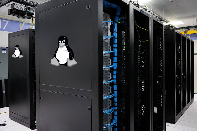 Linux Reseller Hosting, Web Hosting, Web Hosting Reviews, Web Hosting Guides