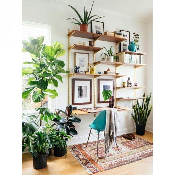 Cantinho verde  ideias para ter plantas dentro de casa!  Jeito de