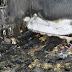 Perro muere en incendio tratando de proteger a un niño