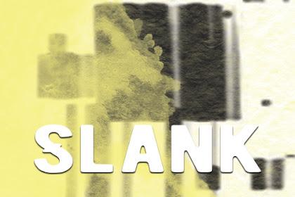 Lirik Lagu Slank - Kamu Harus Pulang by Zona Lirik ID