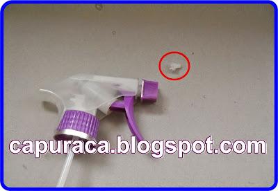 capuraca.blogspot.com cara membasmi cicak