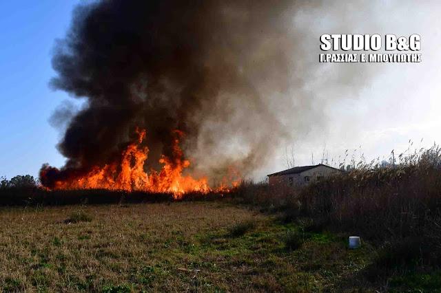 Στο κόκκινο για κίνδυνο εκδήλωσης πυρκαγιάς και πάλι η Αργολίδα