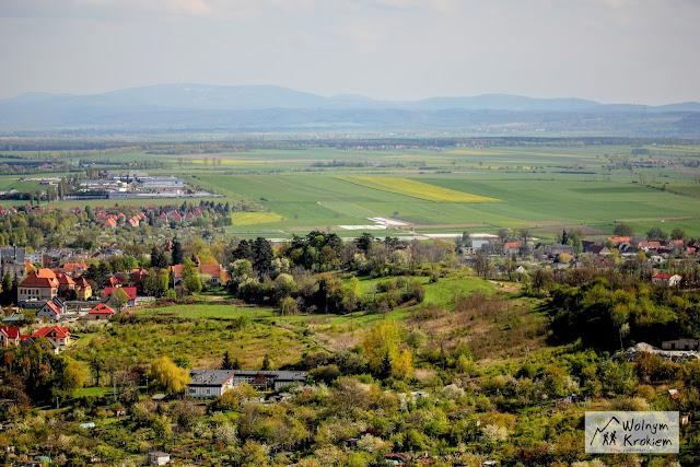 Strzegom widok z Góry Krzyżowej