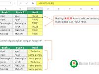Membandingkan Dua isi sel dengan Fungsi EXACT di Excel