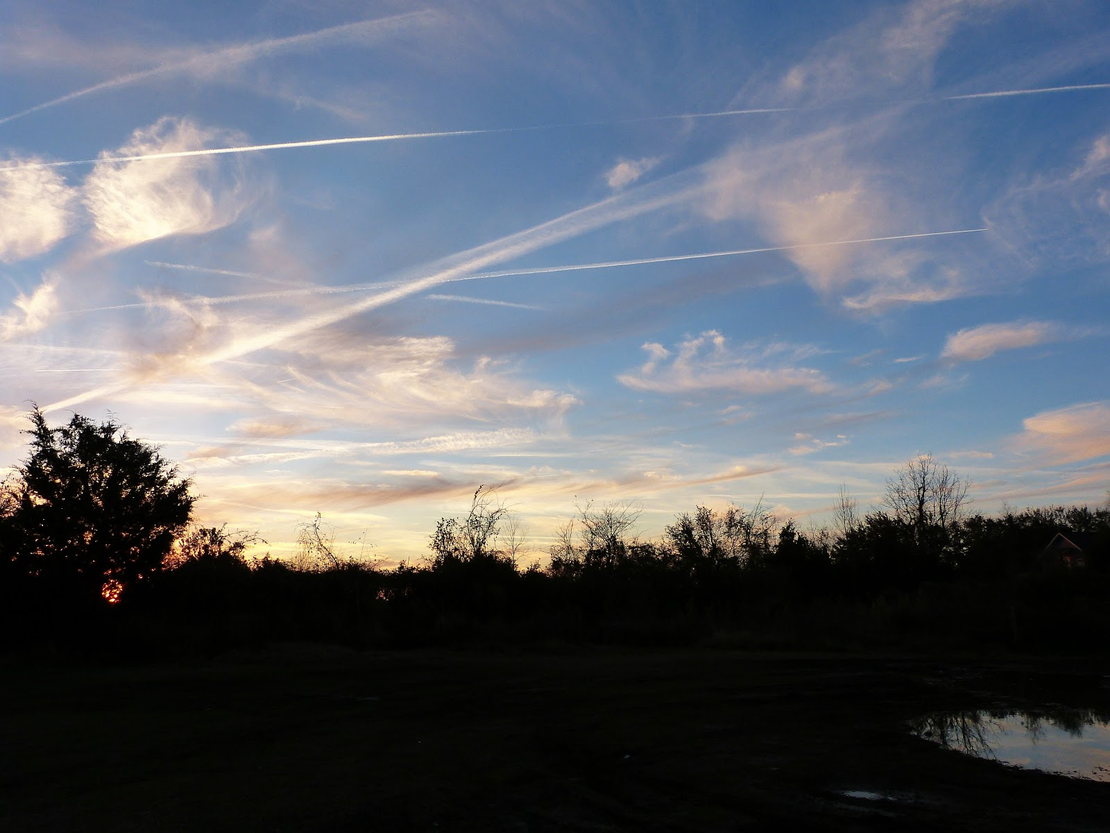 the homespun heart: Sky Watching