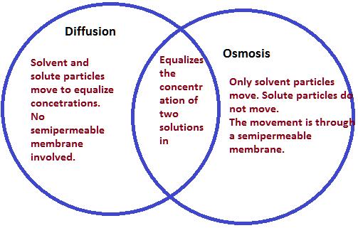myles of science  october 2014
