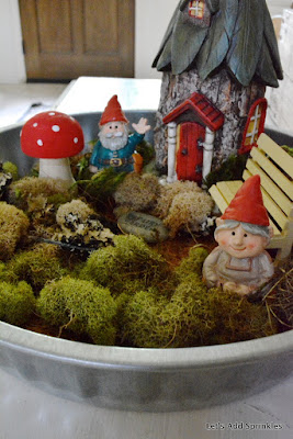 Fairy Garden, Behren's Tray  Tractor supply,