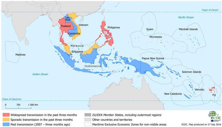 Casually Asian avian flu