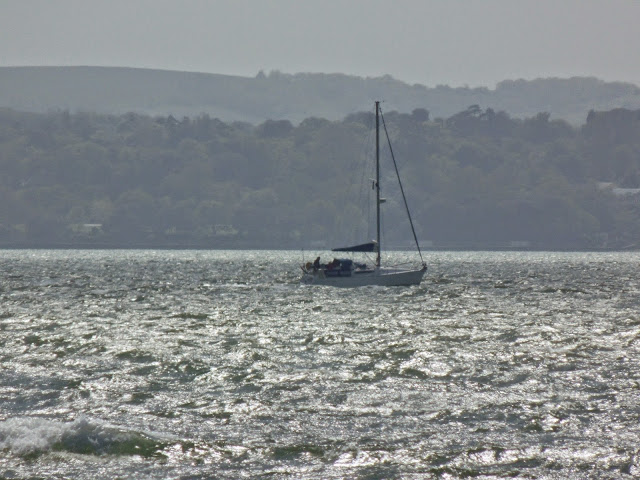 boat off Isle of Wight #silentsunday #mysundayphoto