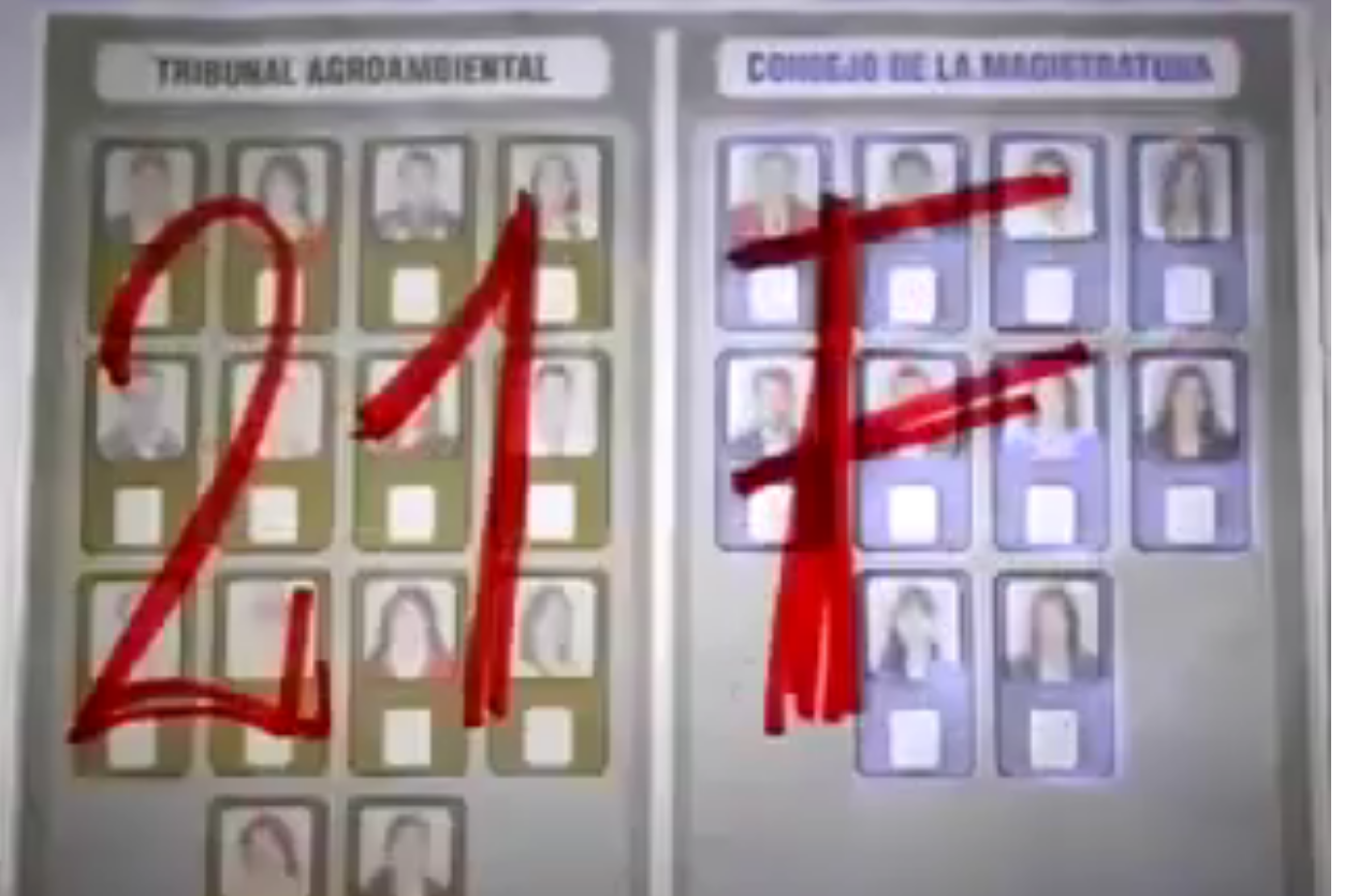 Colectivos y oposición lanzaron campaña por voto nulo en redes sociales
