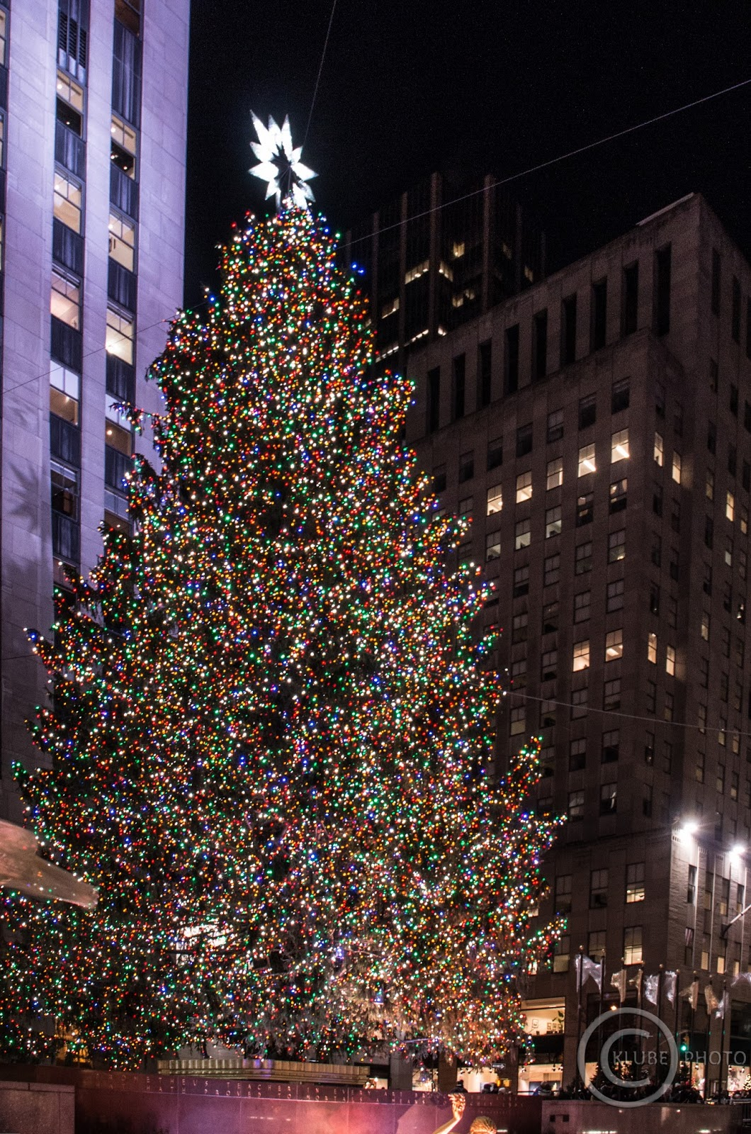 genickstarre nyc der weihnachtsbaum am rockefeller center. Black Bedroom Furniture Sets. Home Design Ideas