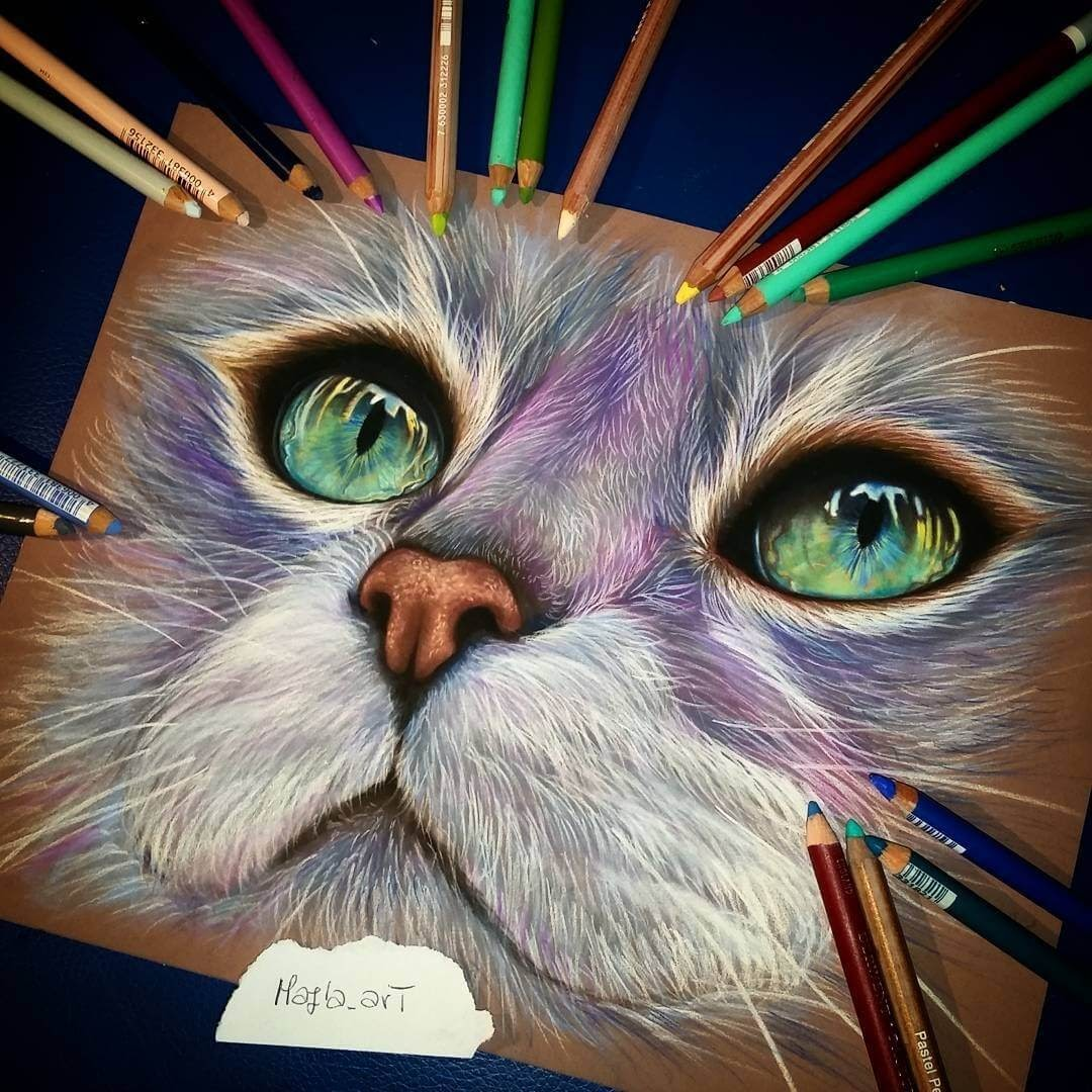 13-Fantasy-Cat-Majla-Colorful-Precise-and-Realistic-Animal-Drawings-www-designstack-co