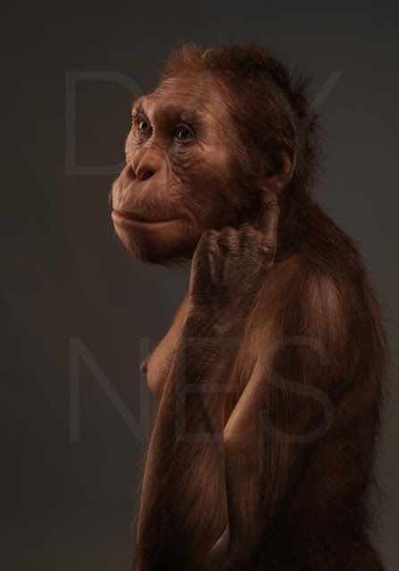 Understanding our early human ancestors: Australopithecus sediba