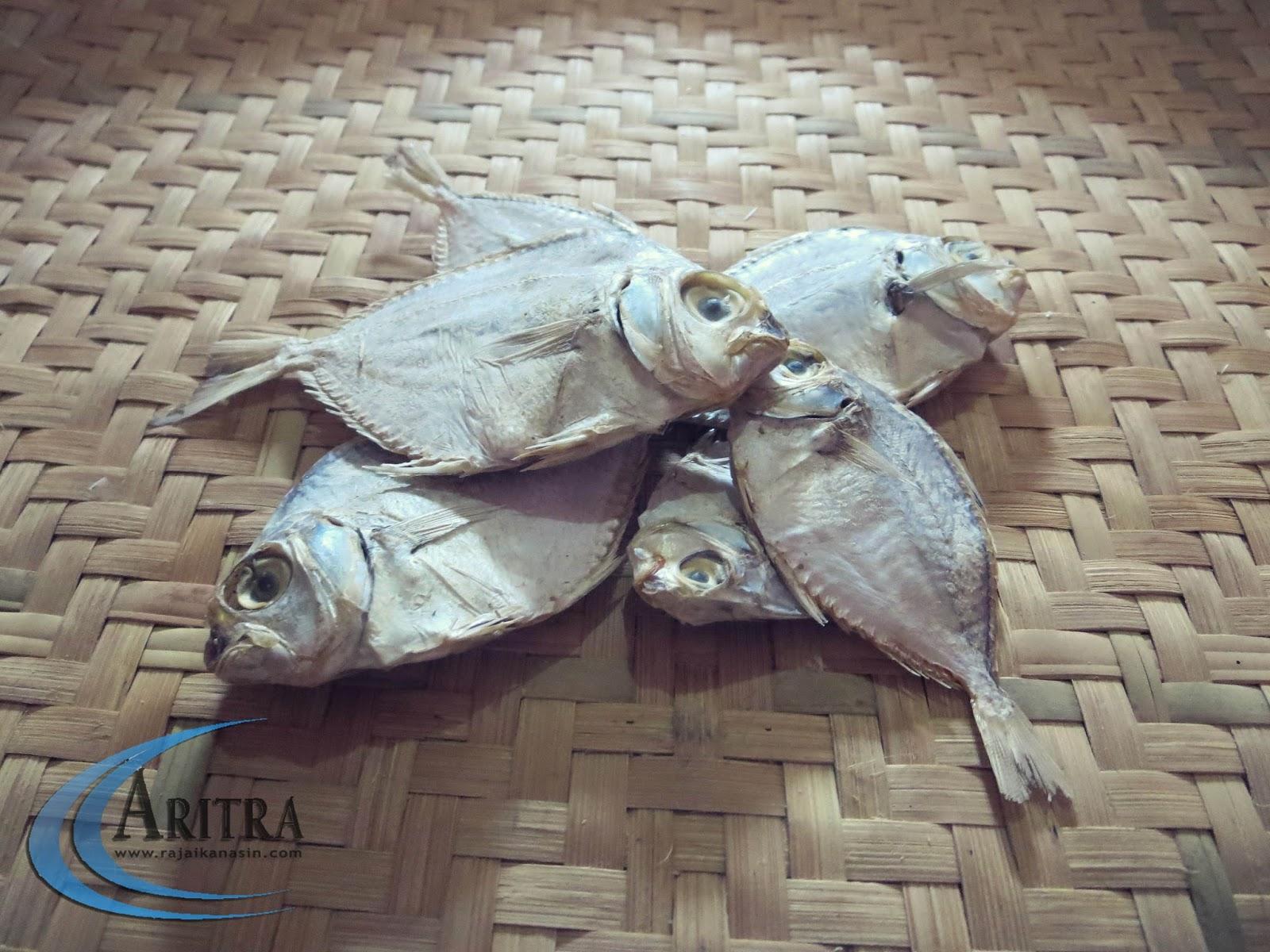 Produksi Kelautan Sibolga Penuhi Kebutuhan Aceh