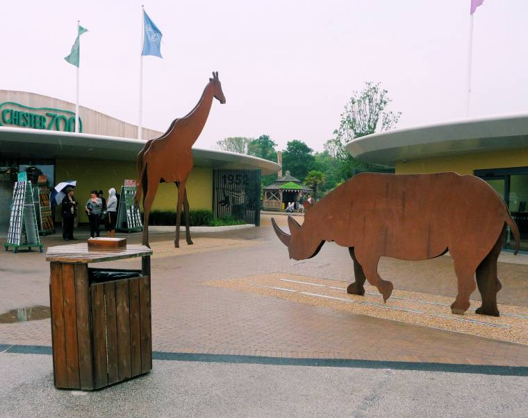 Superbreaks: Chester Zoo Review UK Travel Days Out