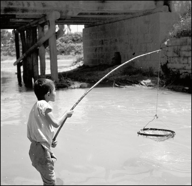 Крымскотатарский мальчик ловит рыбу, 1943 год