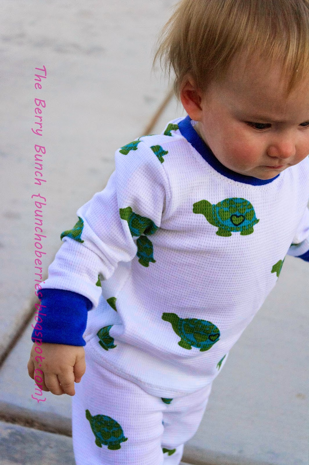 The Berry Bunch: Turtle Thermal PJs: Stitch Swap & KCW