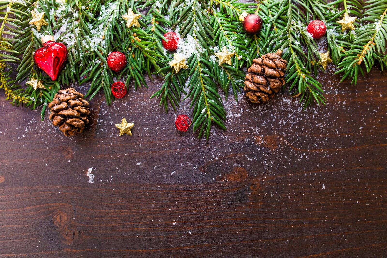 雪混じりの樅の木の葉と松毬と赤い玉と金の星のクリスマス装飾