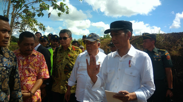 Jokowi: Anggaran Kemenhut Besar dan Habis, Mana yang Sudah Hijau?