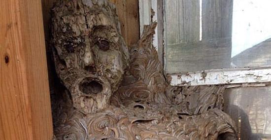 Tenebrosa descoberta - Galpão abandonado guardava surpresa assustadora