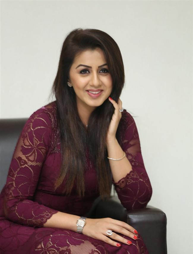 Beautiful Tamil Model Nikki Galrani Long Hair Photos In Maroon Dress