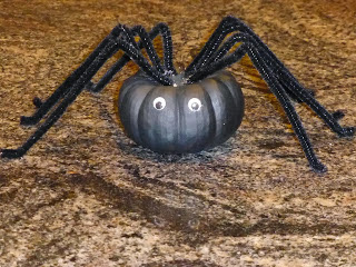Spider, Craft, Halloween, DIY
