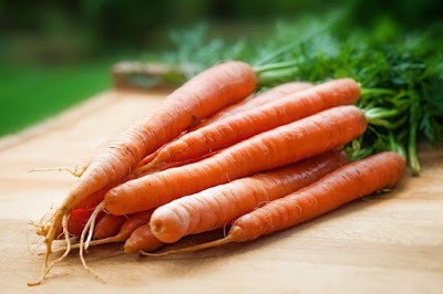 Carrots Vegetables Business Opportunities