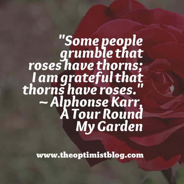 """Some people grumble that roses have thorns; I am grateful that thorns have roses."" ~ Alphonse Karr, A Tour Round My Garden"