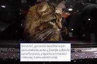 polizza rc auto Genertel e garanzia accessoria per animali domestici