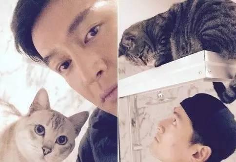 Hu Ge cat