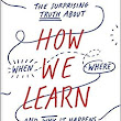 How We Learn: A Book that Understands the Research and Brings it to the Masses