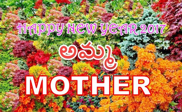 happy new year wishes for mother