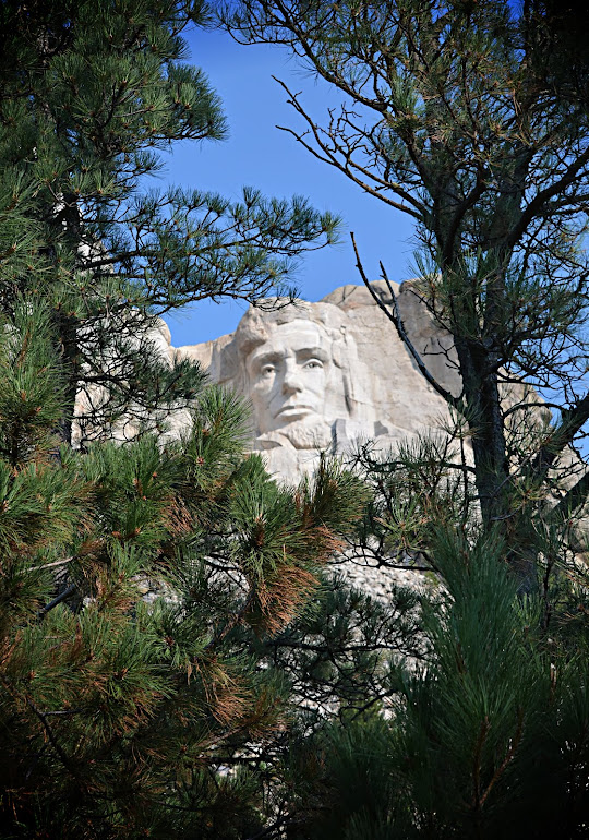 Lincoln Through the Pines - Mount Rushmore