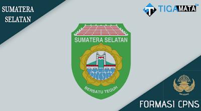 Formasi CPNS Pemprov Sumatera Selatan 2018, Ada 565 Lowongan Tersedia