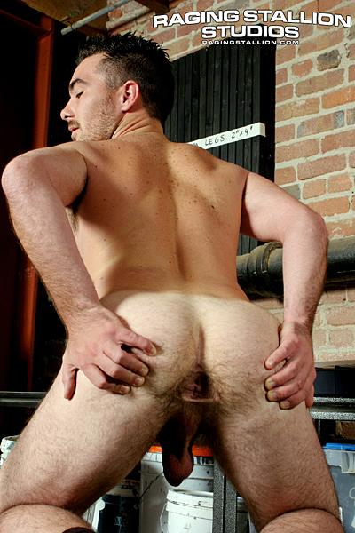 gay behinds