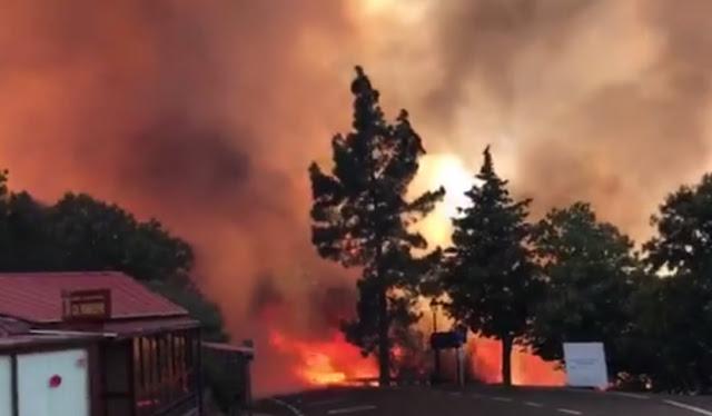 Un voraz incendio quema 1.000 hectáreas en el corazón de Gran Canaria