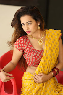 Geetha Shah Looks In Saree 38