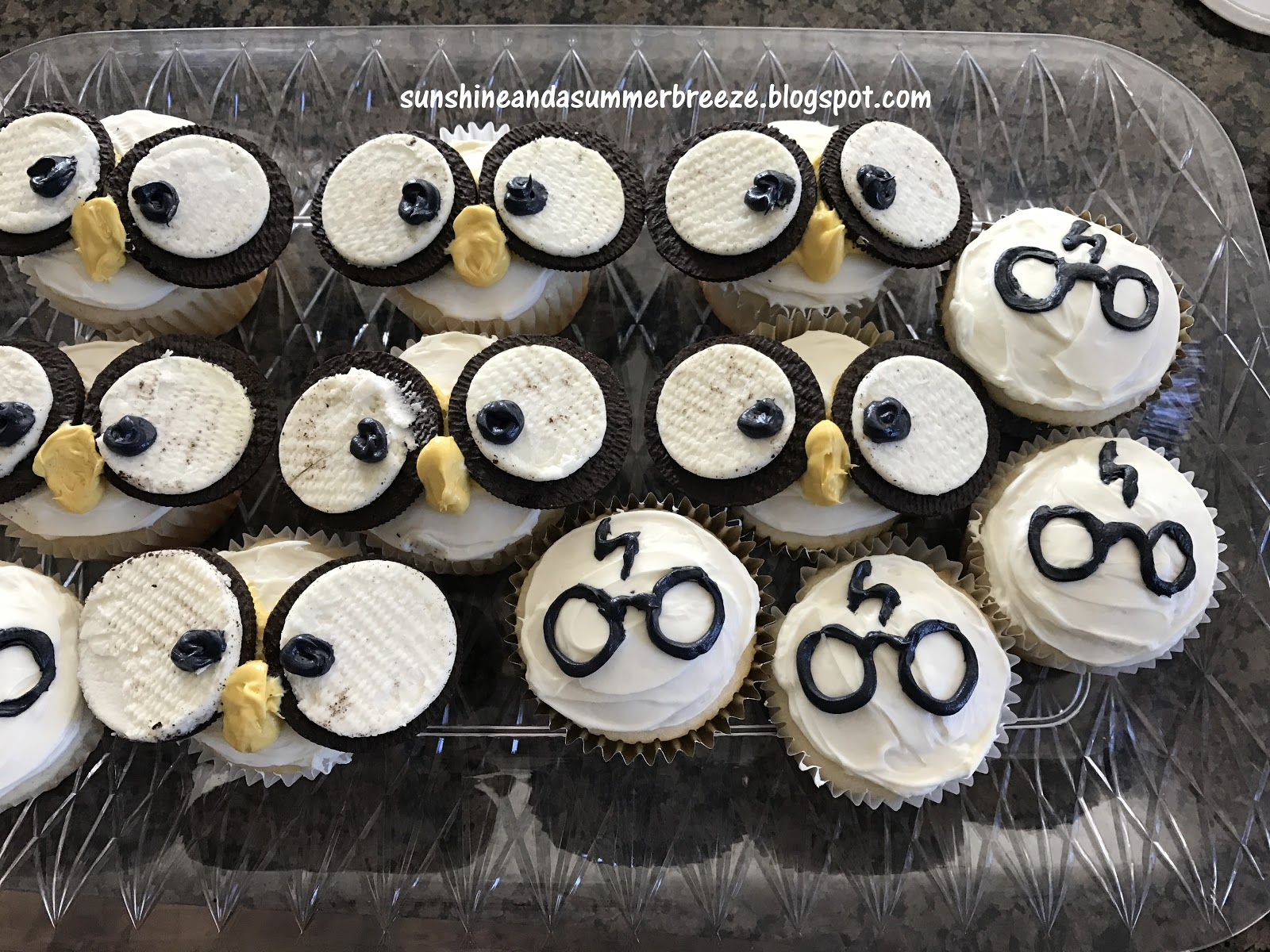 Sunshine and a Summer Breeze Harry Potter and Owl Cupcakes