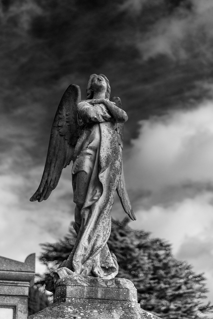 Misdirected Musings : Who Were The Nephilim? Part 2 - Sons