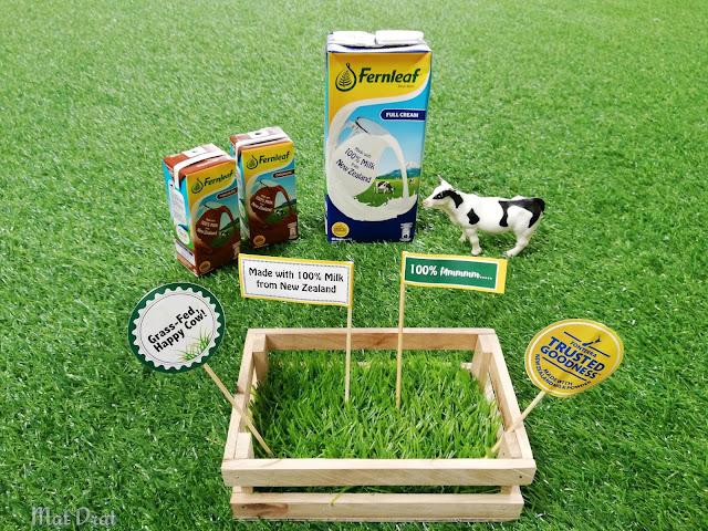 Susu Fernleaf UHT 100% Mmmmm -  Pastinya 100% Manfaat Terjamin dari New Zealand
