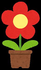 鉢植の花のイラスト(赤)