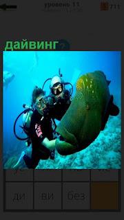 Под водой дайвинг, люди играют с муреной, обхватив руками