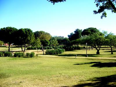 Día de las Aves en el Parque Amate.Grupo Local SEO-Sevilla