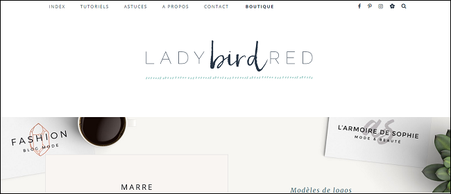 https://ladybirdr.blogspot.fr/