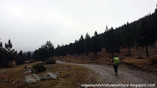 Camino al Refugio Comes de Rubió