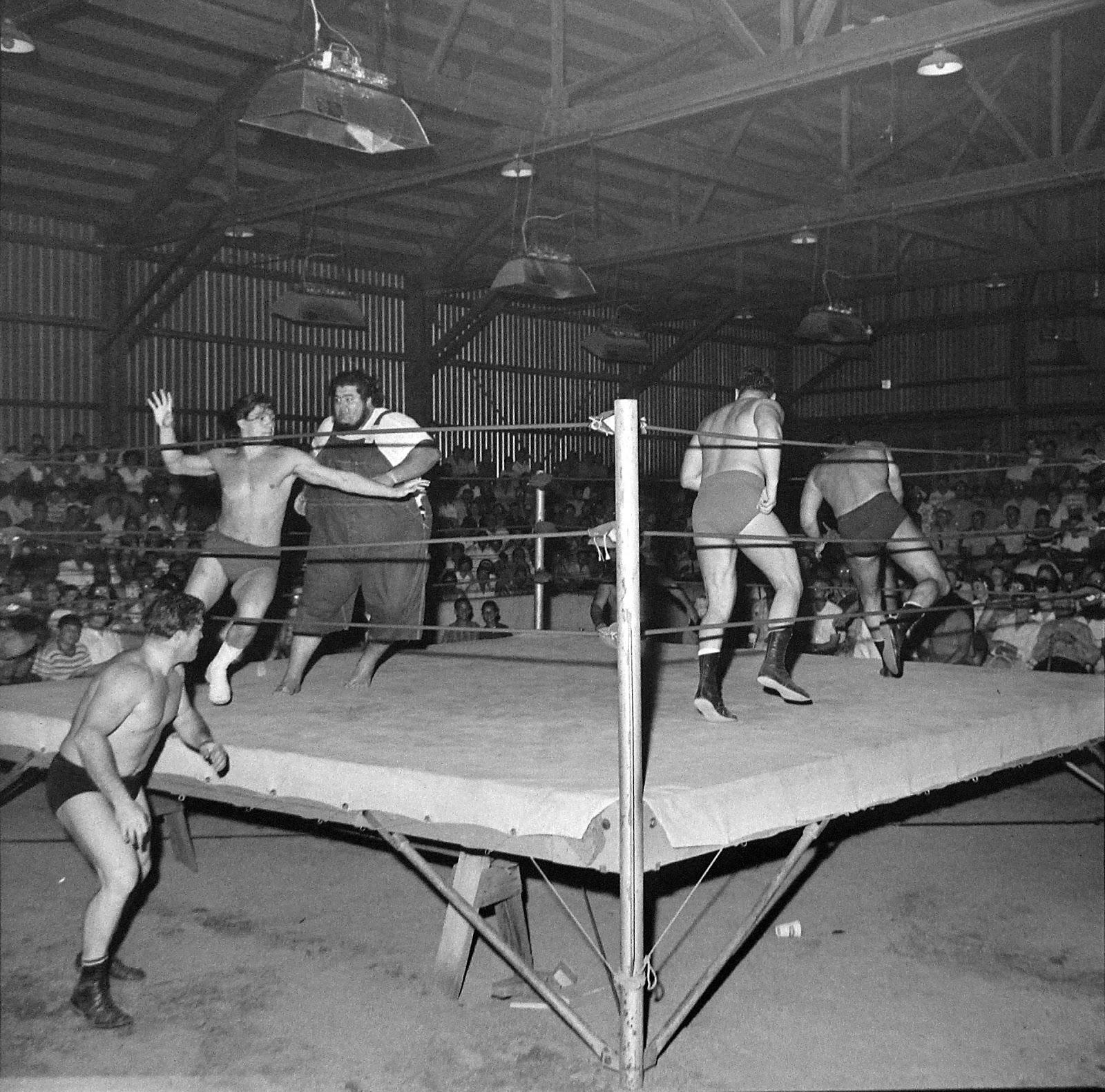 Vintage mixed pro wrestling
