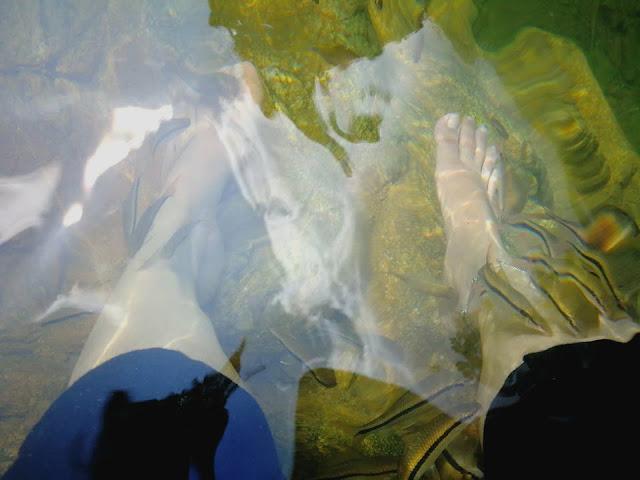 fish spa kenyir lake rumah rakit dulu-dulu tembat