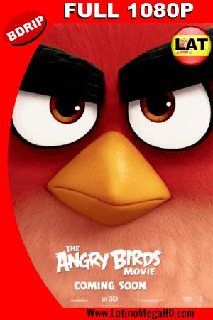 Angry Birds: La Película (2016) Latino Full HD BDRIP 1080P ()